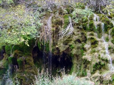 Cuenca 14