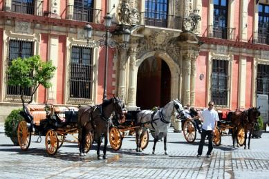 Paseando por Sevilla 07