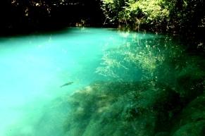 Nacimiento Rio Urederra 13